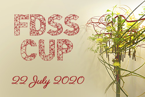FDSS Cup 2020